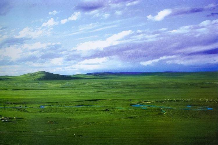 白音錫勒牧場景區