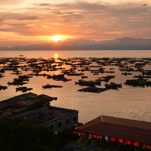 闸坡游记图文-阳江海陵岛旅游分享景点吃饭购物攻略