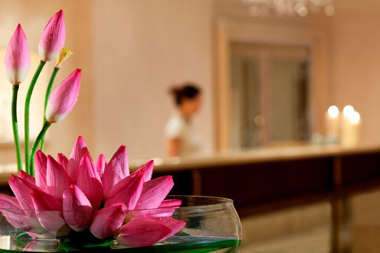 Ritz Carlton Hotel Spa2
