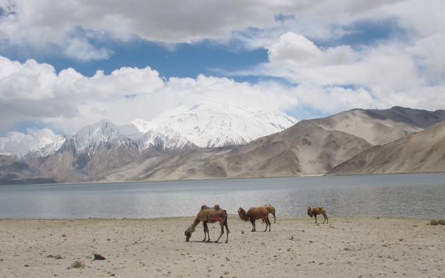 最美的风景新疆、甘肃游记