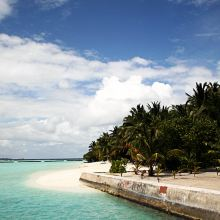 椰子岛图片