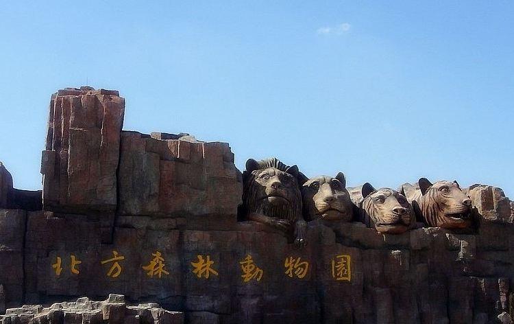 북방(베이팡) 삼림동물원1
