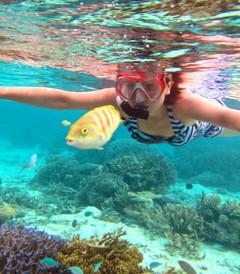 [蕉叶岛游记图片] 我也变成了鱼——马尔代夫蕉叶岛(Vakarufalhi)浮潜