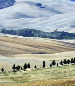 [托斯卡纳大区游记图片] 缤纷意大利(3——托斯卡纳之乡村