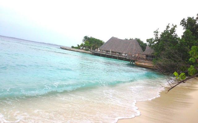 马尔代夫——黑小帅和白小美在Bandos岛的5天7夜(超多图片哦~)