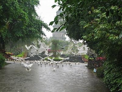 海南熱帶飛禽世界
