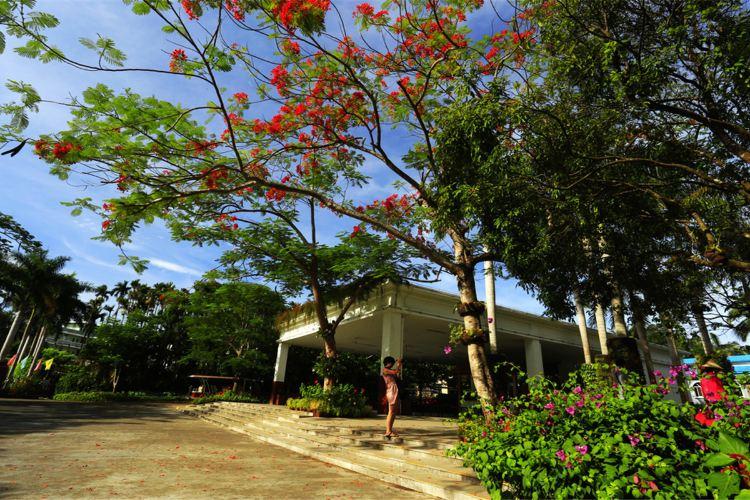 Xinglong Tropical Botanical Garden4