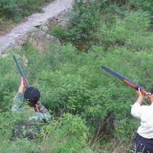蒲洼狩猎场旅游景点攻略图