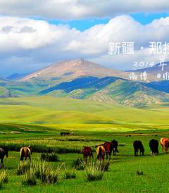 [伊犁游记图片] 新疆伊梨·心随马儿在草原飞驰