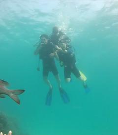 [新加坡游记图片] 马尔代夫班多士度假村和钻石泰达芙士岛度假村六天四晚双岛游