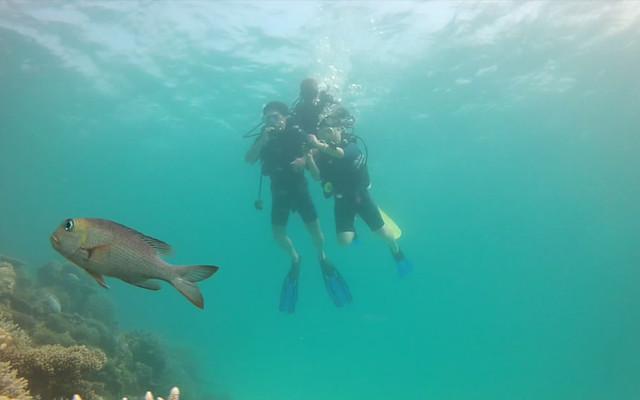 马尔代夫班多士度假村和钻石泰达芙士岛度假村六天四晚双岛游