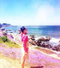 [旧金山游记图片] 美西自驾游:圣地亚哥 洛杉矶 旧金山 一号公路 丹麦村 赫兹古堡 优胜美地