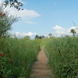 西华湿地公园旅游景点攻略图