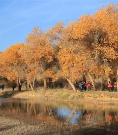 [北京游记图片] 拉杆箱客辞职一年去旅行,第三站:北京、山西、宁夏、内蒙古、福建