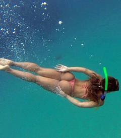 [澳大利亚游记图片] 凱恩斯的421天(大堡礁潛水攻略)