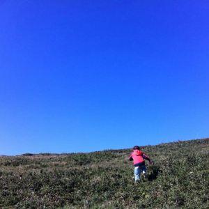 百草坪旅游景点攻略图