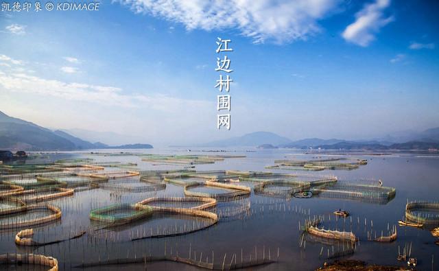 【边走边拍】消失中的风景线:江边村围网