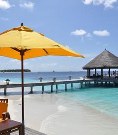 [马尔代夫游记图片] 多多去小岛之前传 多多孕育记:马尔代夫八天六晚三岛游 Banyan Tree,Angsana Ihuru,Angsana Velavaru