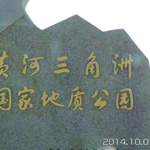 东营游记图文-准老太太很自豪,开个小车到处跑之——东营篇