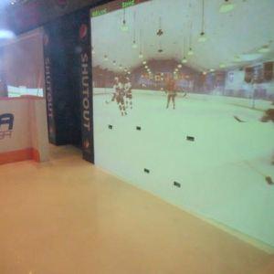 冰球名人堂旅游景点攻略图