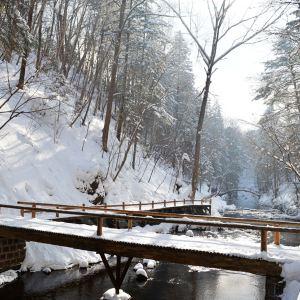 国家吊水壶森林公园旅游景点攻略图