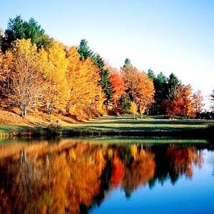 铁力游记图文-森林氧吧  盘点伊春风景秀美的八大森林公园