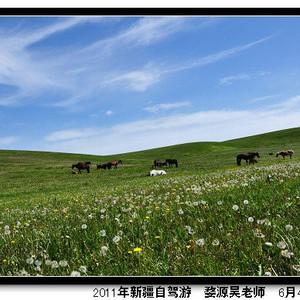 昭苏游记图文-西行三万里,夫妻两人与A3的三十六天新疆自驾游(3)