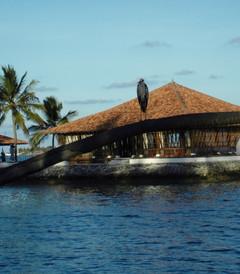 [马尔代夫游记图片] 【马尔代夫】邂逅蓝天白云的蜜月之旅——马代法鲁岛4晚6天游记