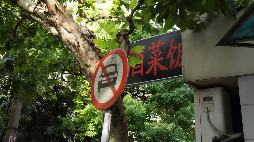 在江南景点里晃荡行走,华北三市
