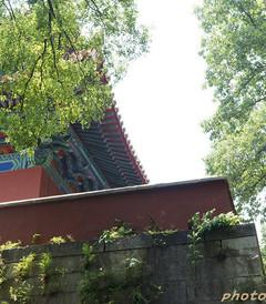 [南京游记图片] 南京闲逛:在历史中穿来穿去