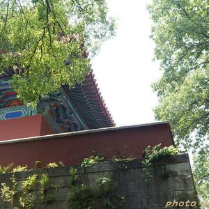 南京游记图文-南京闲逛:在历史中穿来穿去