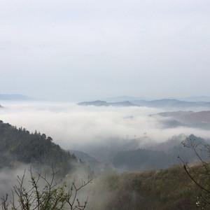 锦屏游记图文-靖州飞山