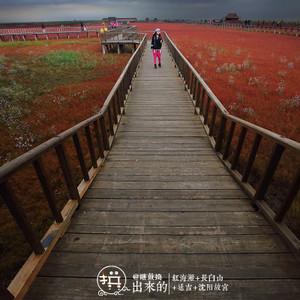 长白山北坡游记图文-在多人之【秋】扫平红海滩、长白山、延吉、沈阳故宫:站站在拼,一站都不能少