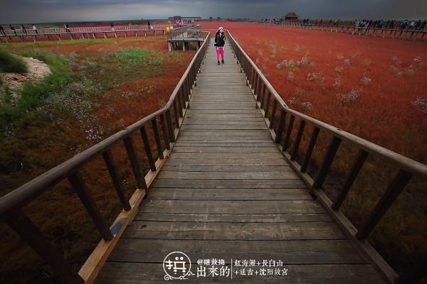 在多人之【秋】扫平红海滩、长白山、延吉、沈阳故宫:站站在拼,一站都不能少