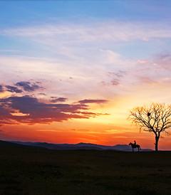 [乌兰布统游记图片] 邀你同游----一起看坝上暮秋中的一草一木,一人一景【樱丶桃 游摄】