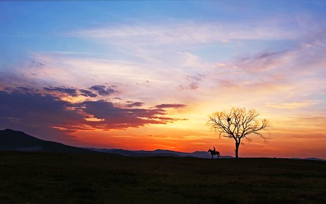 邀你同游----一起看坝上暮秋中的一草一木,一人一景【樱丶桃 游摄】