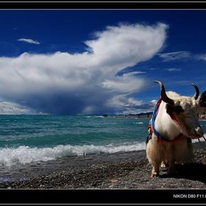 普兰游记图文-西藏大北线最强自驾、摄影攻略(每一个想穿越大北线的人每一个对西藏有向往的人都要进来看一看)