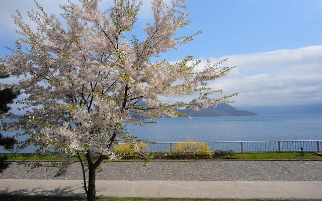 北海道旅游攻略
