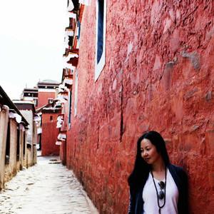 格尔木游记图文-天路自驾之拉萨向西+青藏线出藏(附路况信息)
