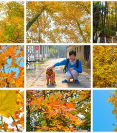 [景德镇游记图片] 【江西·景德镇】:秋意浓,走进千年瓷都——江西·景德镇