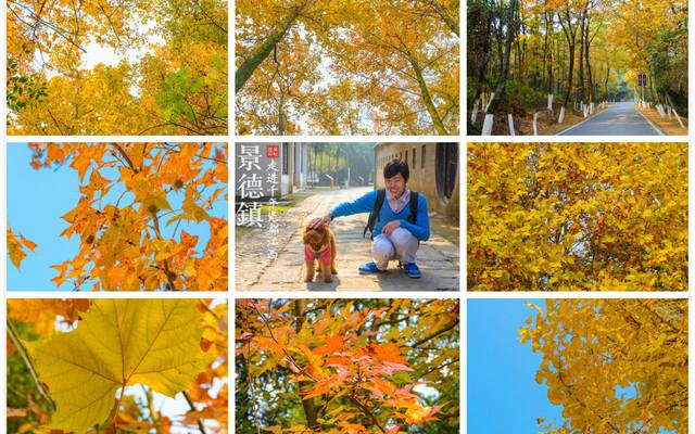【江西·景德镇】:秋意浓,走进千年瓷都——江西·景德镇
