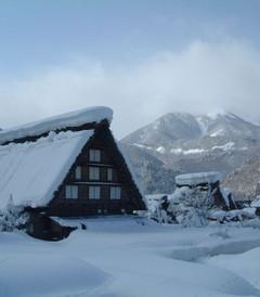 [岐阜市游记图片] 冬日日本的乐游之旅