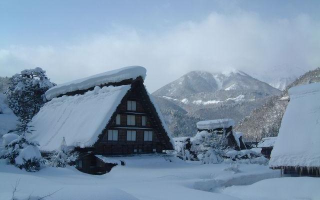 冬日日本的乐游之旅