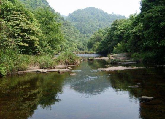巾子峰森林公園