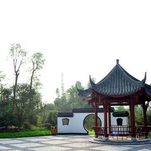 泸县游记图文-休闲旅游胜地——泸县龙桥文化生态园