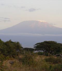 [维多利亚瀑布游记图片] 闲庭信步,非洲之巅