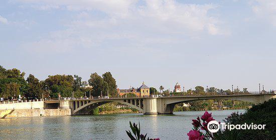 Puente de San Telmo4