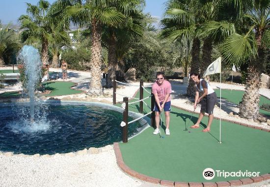 Island Cove Adventure Mini Golf3
