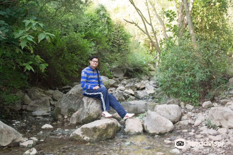 Trail 54