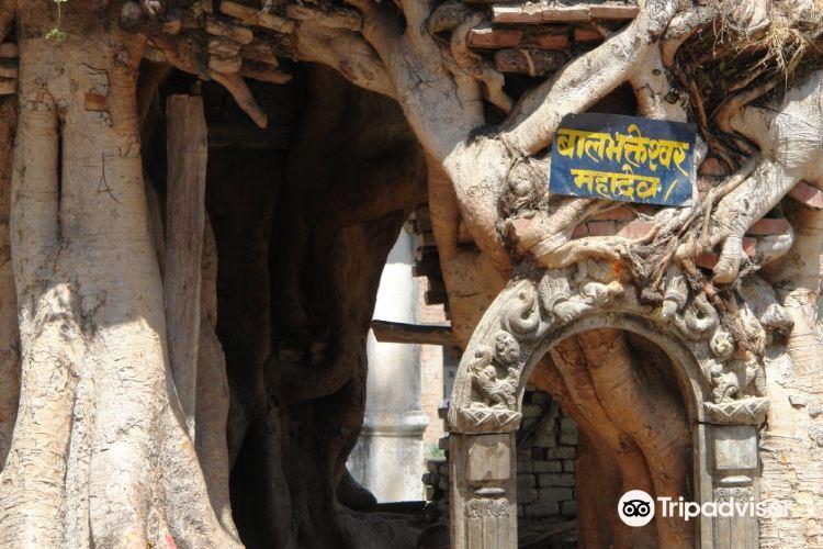 Kotilingeshwar Mahadev Temple3